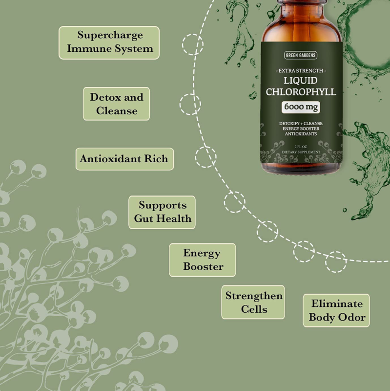 Organic Liquid Chlorophyll Drops for Water with Mint 120 Servings Energy Booster 3