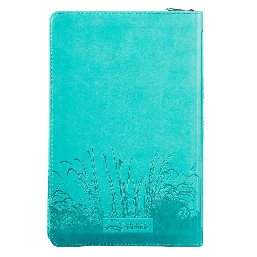 KJV HOLY BIBLE King James Version Turquoise Thumb Indexed Zippered Edition 3